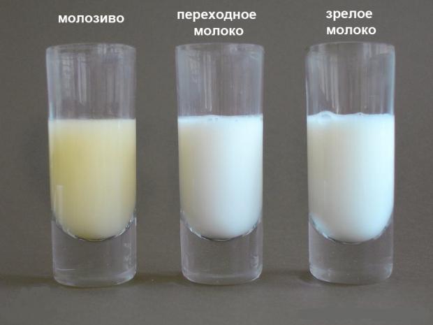 Грудное молоко стало горьким что делать