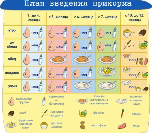 Схема прикорма с 5 месяцев по дням