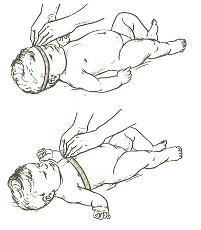 как правильно измерять окружность головы и грудной клетки